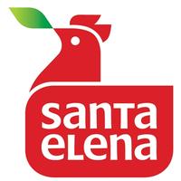 GRUPO SANTA ELENA